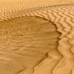 Bob Hawkins / Wind And Sand / 3rd / Digital Advanced Texture