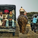 Robbie Robinson - On The Road In India - HM - Digital Advanced Modes of Transportation