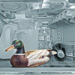 Hilarie McNeil-Smith / Cold Duck / HM / Digital Advanced Around the Kitchen