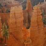Uliana Yaworsky - Bryce Canyon - HM - Digital Intermediate Pictorial