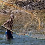 Sherry Prenevost / Man Fishing / HM / Digital Beginner Pictorial