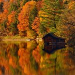 Robert Bateman / Waterfront Cottage / HM / Digital Advanced Pictorial