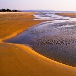 Clement doRosario / Varca Beach Goa / 2nd / Digital Advanced Pictorial