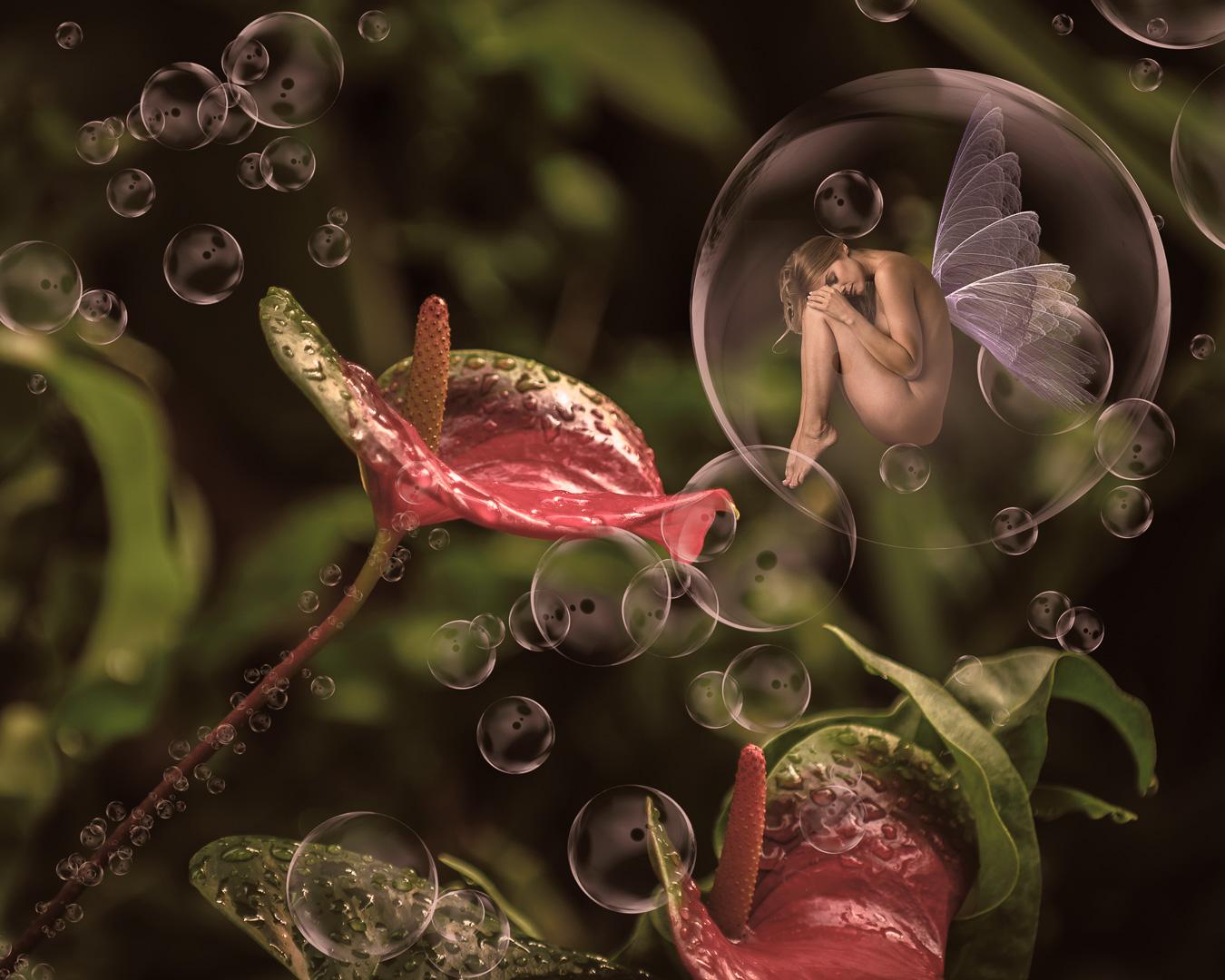 Jon Clarke – Floating among the Anthurium – 3RD