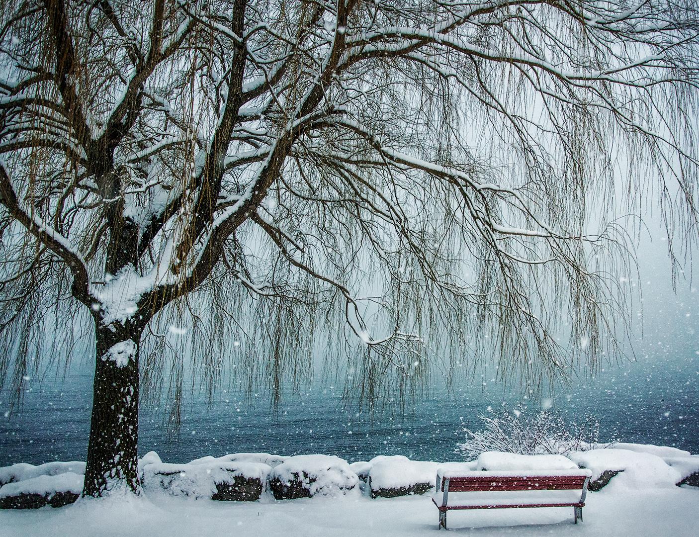 Jim Prieur – Winter Reflections – HM