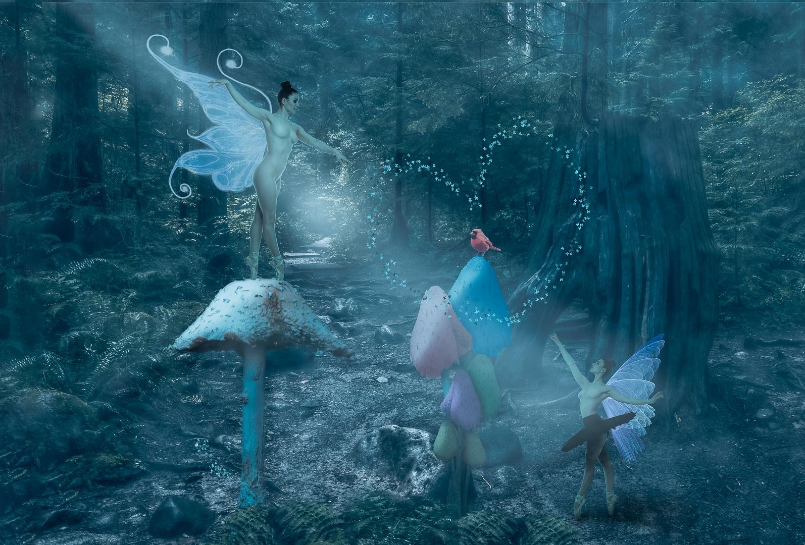 Jon Clarke – Woodland Fairies – 2ND